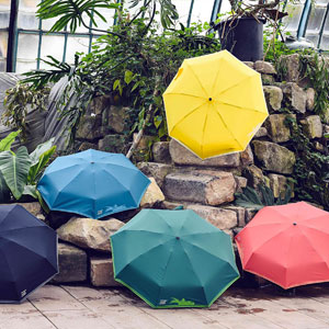 Parapluie marqué